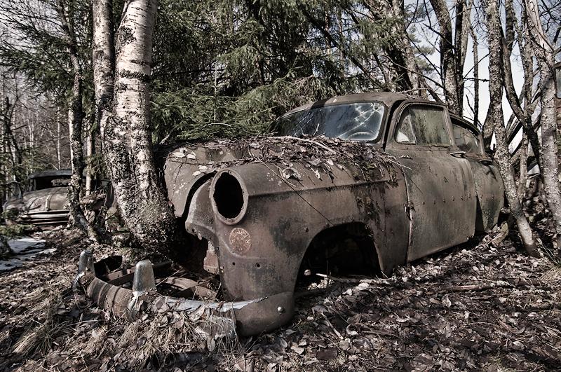 eldre vrakpant bil i skogen