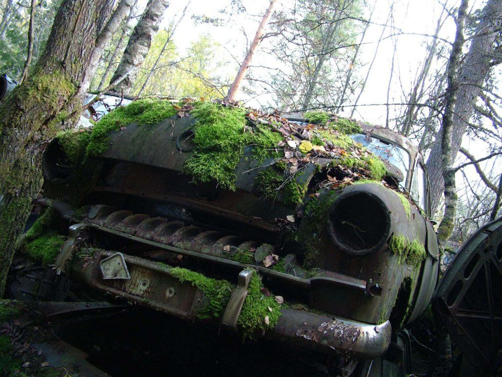 Fronten til en eldre bil med mose på seg